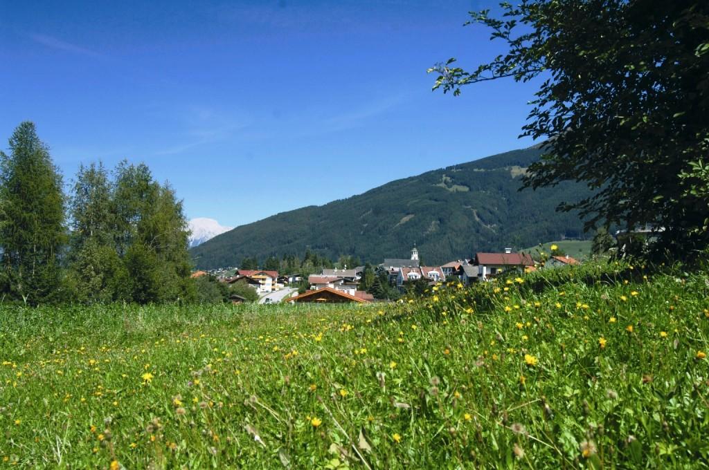 Schönberg mit Blumenwiese im Sommer